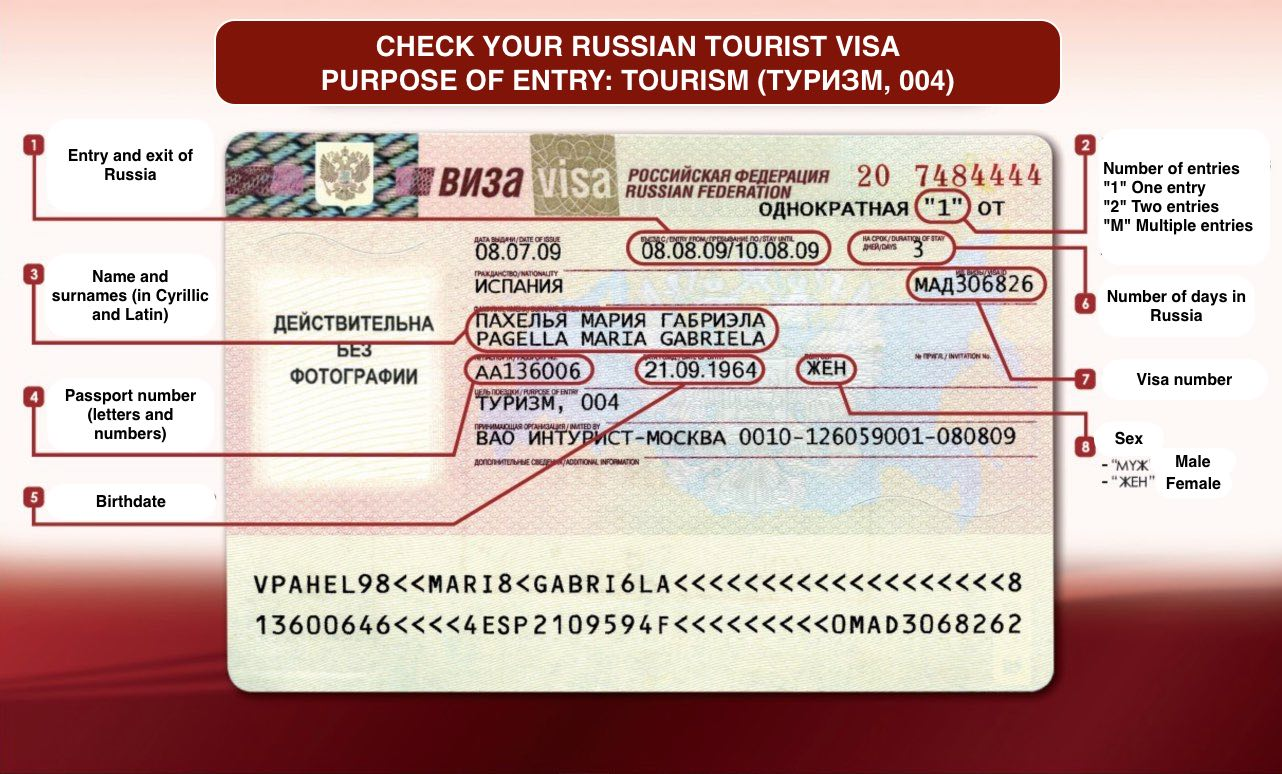 Check Russian visa data